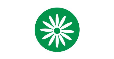 Árnica